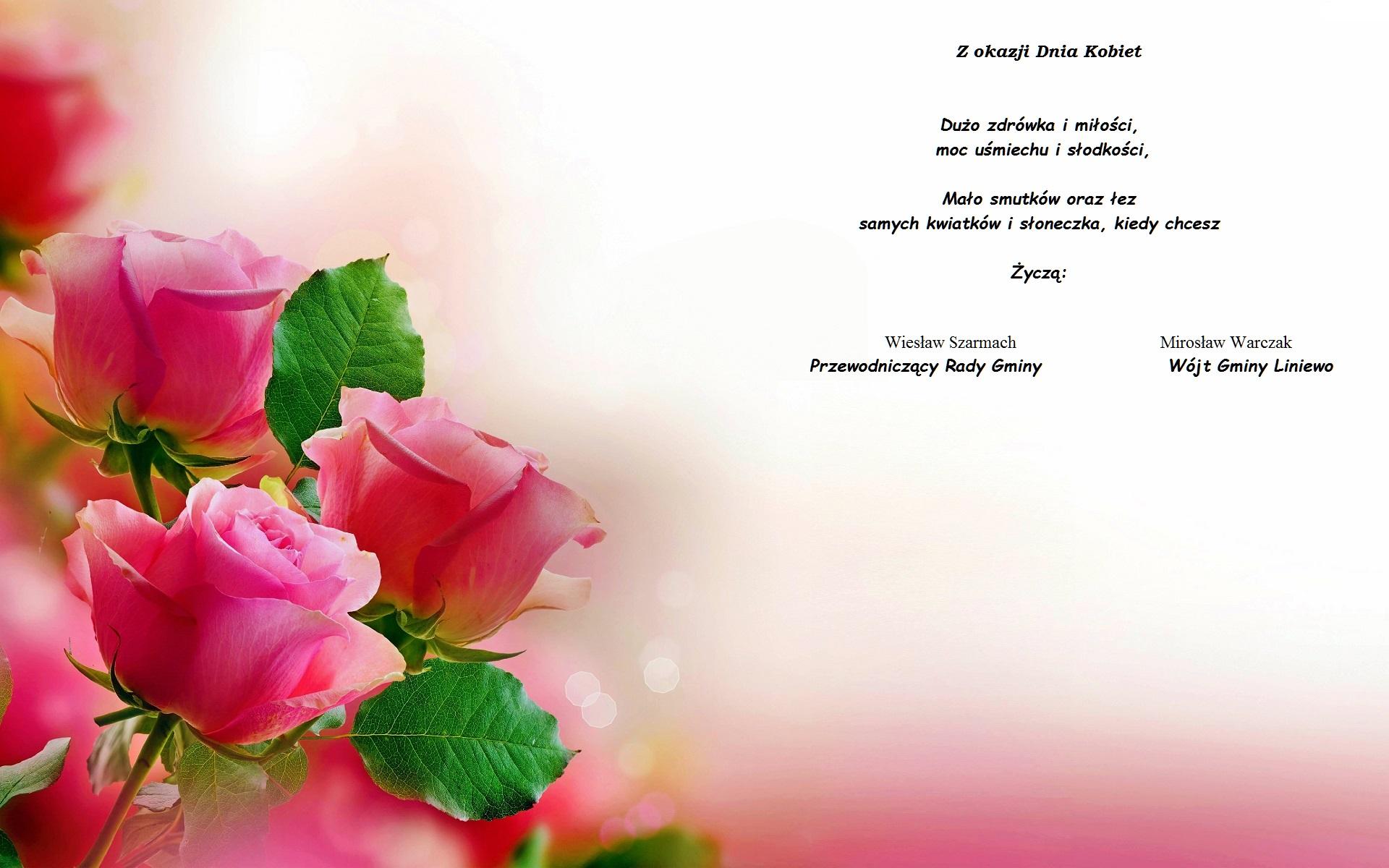 kwiaty-roze